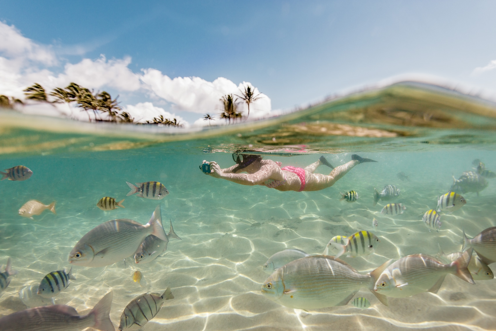 Snorkeling-Underwater-Photos